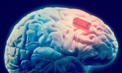 "Elon Musk plans to develop ""Brain Chips"" so we can become Cyborgs"