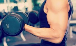 Maximising your Muscle Growth