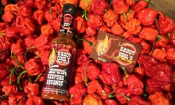 Daddy Cool Chilli Sauces  – Fiery Foods to get you feeling fighting fit!