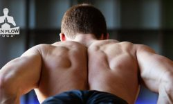 10 Habits to Boost your Testosterone